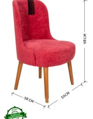 Upholstered Chair Sadu Trim